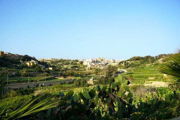 Gozo (6).JPG
